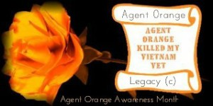 Agent Orange Killed My Vietnan Vet