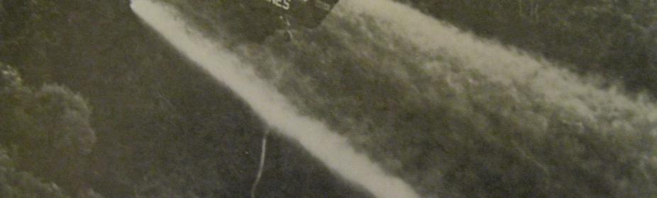 Agent Orange sprayed over the jungles of Nam 1967 Charles Larry