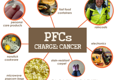 Perflourinated Compounds (PFCs)