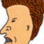 Profile picture of exote